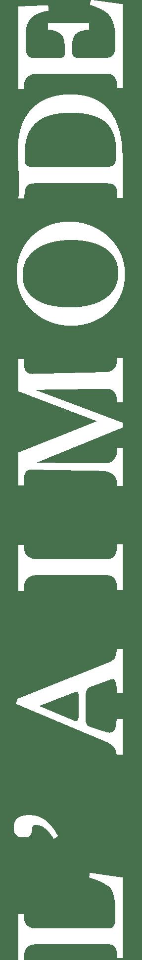 logo Aimode vertical